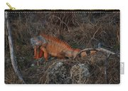 Oranage Iguana Carry-all Pouch