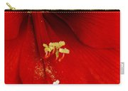 Orange Amaryllis Hippeastrum Bloom 12-29-10 Carry-all Pouch