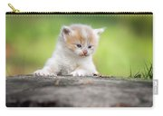 Orange And White Kitten Carry-all Pouch