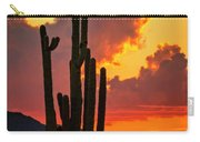 Orange Beautiful Sunset  Carry-all Pouch