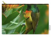 Orange-breasted Sunbird Feeding On Protea Blossom Carry-all Pouch