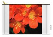 Orange Clivia Poster Carry-all Pouch