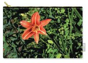 Orange Day Lily 1 Carry-all Pouch