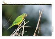 Orange-fronted Parakeet Carry-all Pouch