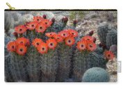Orange Hedgehog Patch  Carry-all Pouch