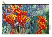 Yellow-orange Kangaroo Paws At Pilgrim Place In Claremont-california- Carry-all Pouch