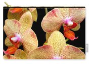 Orange Orchid Phalaenopsis Carry-all Pouch