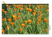 Orange Parade Carry-all Pouch