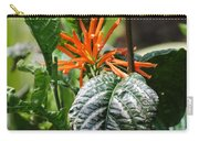 Orange Plants Carry-all Pouch