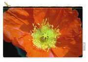 Orange Pop Photograph Carry-all Pouch