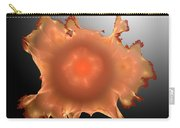 Orange Something.b. Carry-all Pouch