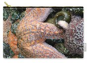Orange Starfish Carry-all Pouch