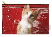 Orange Tabby Kitten In Red Drawer  Carry-all Pouch
