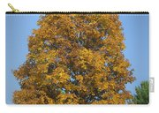 Orange Tree Pipestem Short Course Carry-all Pouch
