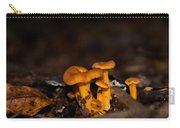 Orange Woodland Mushrooms Carry-all Pouch