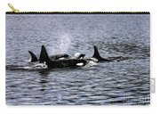 Orcas, The Killer Whales Carry-all Pouch