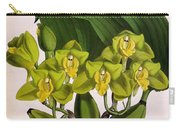 Orchid, Bifrenaria Aurantiaca, 1891 Carry-all Pouch