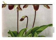 Orchid, C. Oenanthum Superbum, 1891 Carry-all Pouch