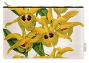 Orchid, Dendrobium Chrysotis, 1891 Carry-all Pouch
