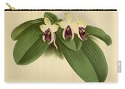 Orchid Phalaenopsis Violacea Singapore  Carry-all Pouch