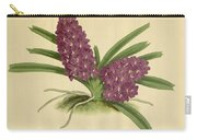 Orchid Saccolabium Ampullaceum  Carry-all Pouch