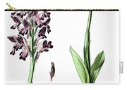 Orchis Militaris, The Military Orchid Carry-all Pouch