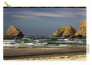 Oregon Coast 14 Carry-all Pouch