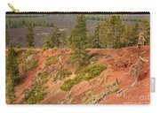 Oregon Landscape - Red Crater Carry-all Pouch