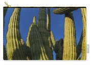 Organ Pipe Cactus Arizona Carry-all Pouch
