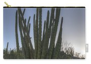Organ Pipe Cactus At Sunset Carry-all Pouch