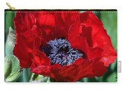 Oriental Red Photograph Carry-all Pouch