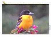 Oriole Orange Carry-all Pouch