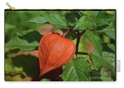 Ornamental Physalis Carry-all Pouch