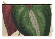 Ornamental Yam  Dioscorea Discolor Carry-all Pouch