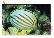 Ornate Butterflyfish Carry-all Pouch