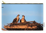 Osprey At Home Carry-all Pouch