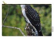 Osprey Gaze Carry-all Pouch