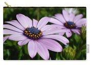 Osteospermum 'margarita Lilac' Carry-all Pouch