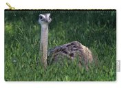 Ostrich Chick Carry-all Pouch