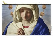 Our Lady Of Health Carry-all Pouch