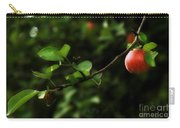 Out On A Limb  A Tempting Photograph Of A Tasty Ripe Red Apple On A Tree  Carry-all Pouch