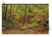 Owl Canyon In Autumn 2 Carry-all Pouch