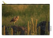 Owl Dancing At Dusk Carry-all Pouch