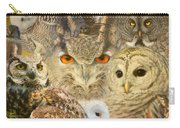 Owl You Need Is Love Carry-all Pouch