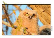 Owlet In A Spring Sunrise Carry-all Pouch
