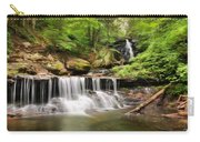 Ozone Falls Ricketts Glen Carry-all Pouch