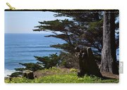 Pacific Beauty Carry-all Pouch