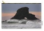 Pacific Northwest Waves Carry-all Pouch