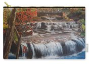 Paine Falls Carry-all Pouch