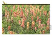 Paintbrush Beauties Carry-all Pouch